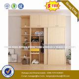 Modern Melamine Two Doors Bookcase File Cabinet (HX-8NR0643)