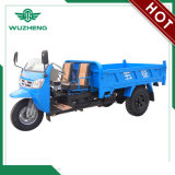 Chinese Open Waw Diesel Motorized Cargo Tricycle for Sale