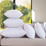 Gold Piping 100% Egyptian Cotton Cover White Goose Down Pillow (DPF10307)