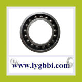 2mm-200mm Solid Bearing Steel Balls