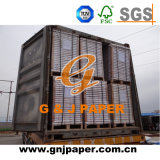 700*1000mm Surewin Brand Carbonless Paper in Sheet