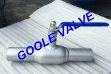 150LB/300LB/600LB/900LB Stainless Steel Reduced Bore Fully Welded Ball Valve (GARQ61PPL)