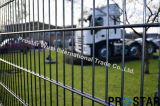6/6/6 Double Wire Welded Mesh Fencing with PVC Coating