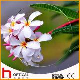 1.499 Single Vision 50mm Optical Lens Hmc