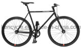 700c Hot Sale Cheap Single Speed Fixed Gear Bike Bicycles Sy-Fx70009