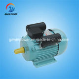 Yl Series Single Phase Dual-Capacitor Induction Motor (heavy-duty)