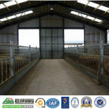 Pig Farm Steel Structure House