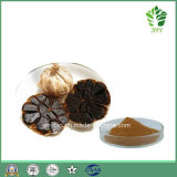 Anti-Heart Disease Black Garlic Extract Polyphenol 2%~20%