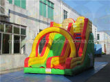 Tropical Inflatable Slide, Bouncer Slide From Guangzhou Factory