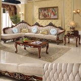 Real Leather Sofa for Living Room Furniture (D812)