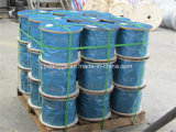 Steel Wire Rope /Steel Cable /Wire Rope