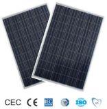 210W Poly Crystalline Solar Panel for Global Market (ODA210-27-P)