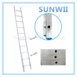Aluminum/Aluminium/Steel Straight Ladder for Construction, Scaffold