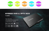 Hybrid DVB and IPTV Box with Our Own Platform Mickyhop