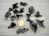 Dried Black Fungus Mushroom for Export
