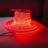 3000k/6000k/4000k/Red/Green/Blue RGB 5050SMD RGB LED Rope Light LED Strip Light