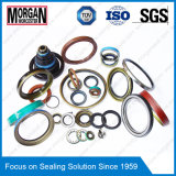 PTFE/NBR/FKM/ Pmq Customized Large Size Rubber Seal