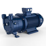 2BV Water Ring Vacuum Pump with CE Certificate
