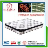 Environment and Healthy Pocket Spring Mattress for Star Hotel
