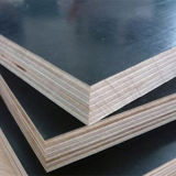 13 Plies Black Film Faced Plywood