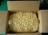 New Crop Fresh Peeled Garlic (180-220grains/kg)