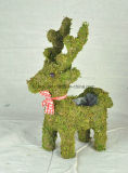 Animal Shaped Green Moss Flower Pot