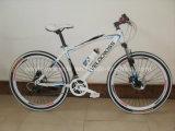 MTB Bike (WT-2678)