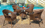 Hand Make Hot Sale Outdoor Rattan Dining Furniture (FP0029)