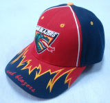 Fashion Flexfit Baseball Cap with Embroidery 1069