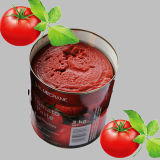A10 Tintomato Paste (Double Concentrated)
