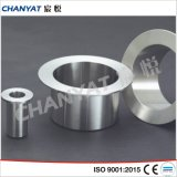 Stainless Stub End A403 (304L, 316L, 317)
