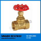 Brass Stop Valve for Water Meter (BW-S04)