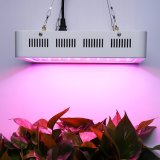 High Quality Plant Grow Lamp 300W 600W 1000W 2000W