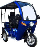 Enclosed 110cc Woman Handicapped Disabled Tricycle for Elderly