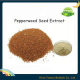 Semen Lepidii Extract, Pepperweed Seed Extract