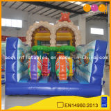 Indoor Playground Inflatable Obstacle for Kids Intelligence Development (AQ01219)