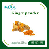 100% Natural Dried Ginger Powder