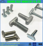 Stainless Steel/ Carbon Steel T Bolt / Tee Bolt / Hammer Head Bolt / Square Head Bolt