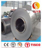 Stainless Steel Coil Belt 304