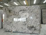 Bianco Antico Granite Slab for Countertop