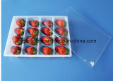 Disposable Plastic Fruit Strawberry Packing Tray