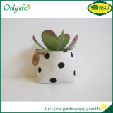 Onlylife BSCI Reusable Customized Fabric Planter