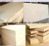 Plywood Manufacture with Poplar or Hardwood Core Commercial Plywood
