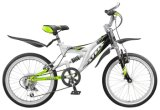 Mountain Bicycle with Rear Suspension M013