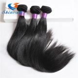 Brazilian Virgin Hair Straight 100% Remy Human Hair
