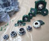 Pillow Block Bearing Units (UCFL306) Fkd/Hhb