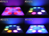 Guangzhou Wholesales Indoor 36W LED Flower Dance Floor Stage Light
