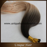 Wholesale European Virgin Ombre Remy Keratin Hair Extensions