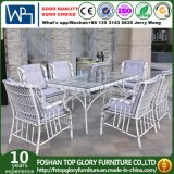 Rattan Dining Table Set with Six Chair (TG-1667)