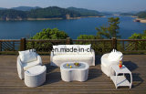 Hot Leisure Rattan Garden Furniture Wicker Sofa